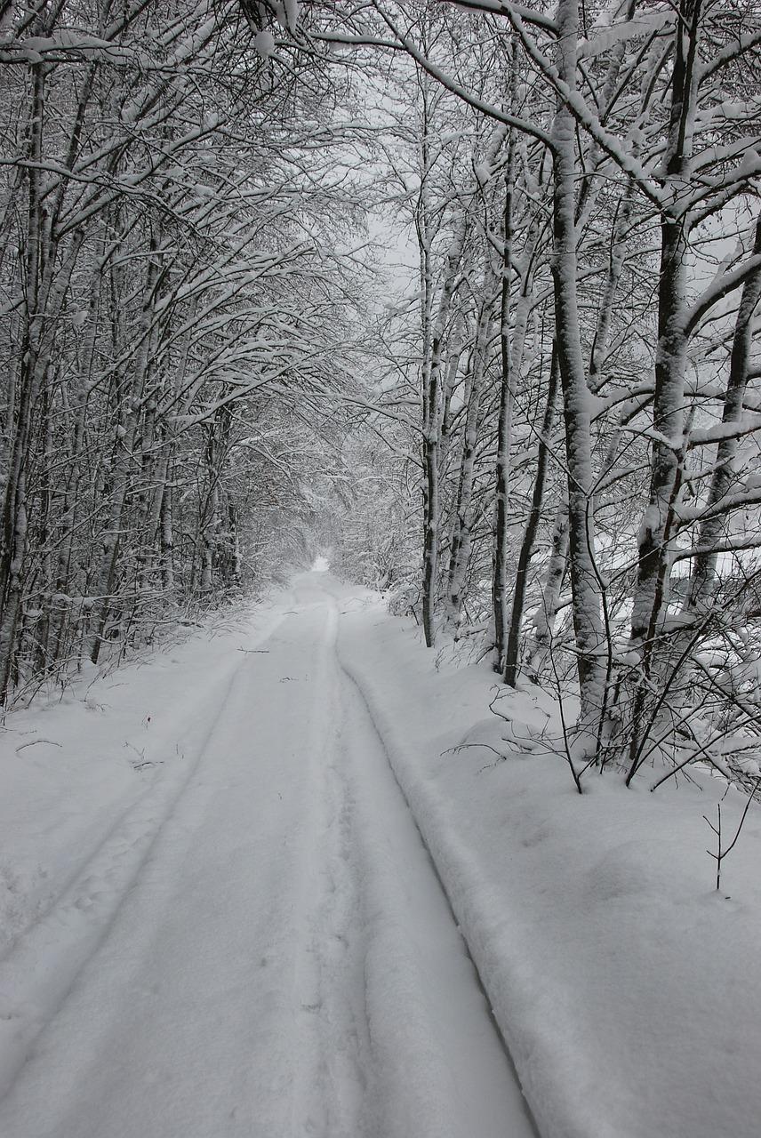 snow-238210_1280
